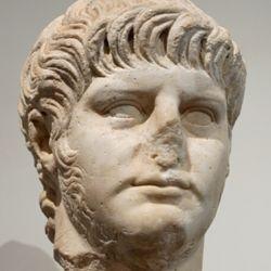 Palatine Nero